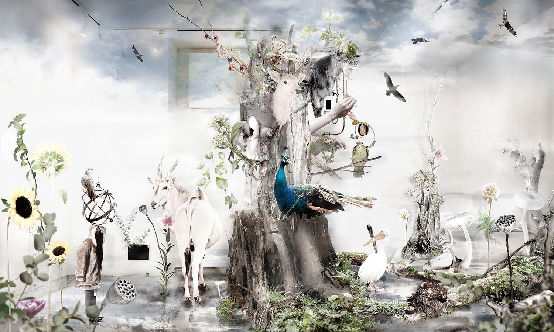 白の虚像 常世の樹海