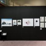 the art fair +plus-ultra 2016 ギャラリー門馬ブース