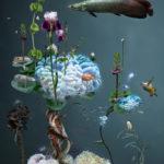 Biotope 5 by Erika Kusumi
