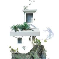 Hermit's Garden / Fragment 2
